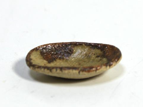 画像1: 陶芸楕円皿・小(特価)