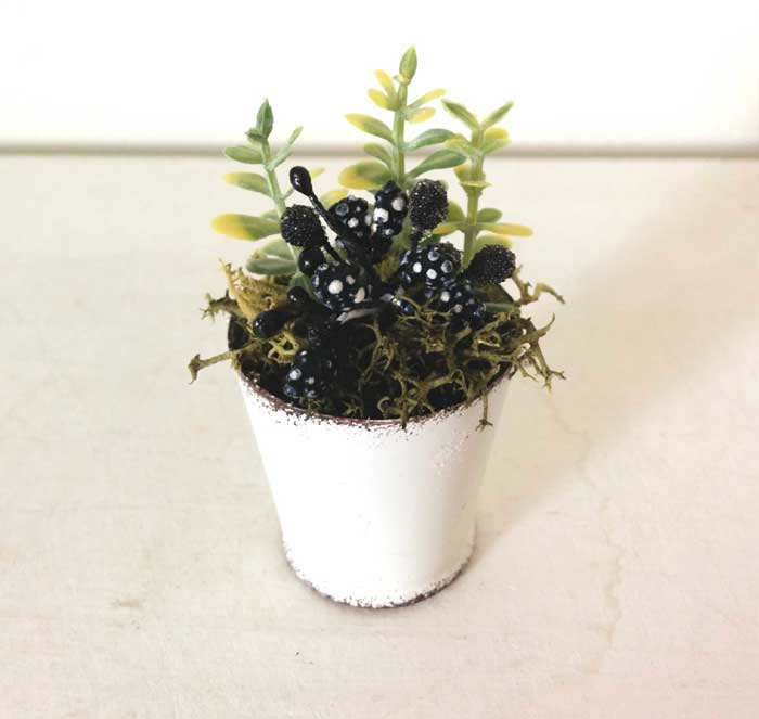画像1: 白ブリキバケツ寄せ植え