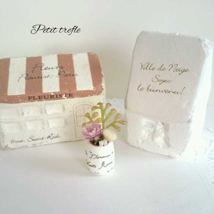 画像2: ミニチュア植物 pink×white