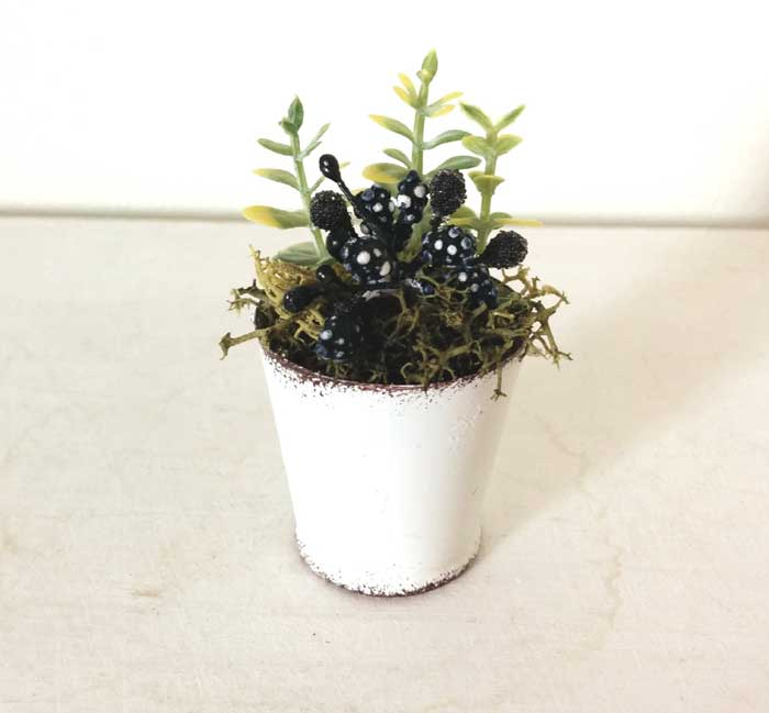 画像2: 白ブリキバケツ寄せ植え