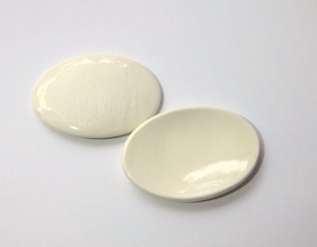 画像2: パーティ大楕円皿