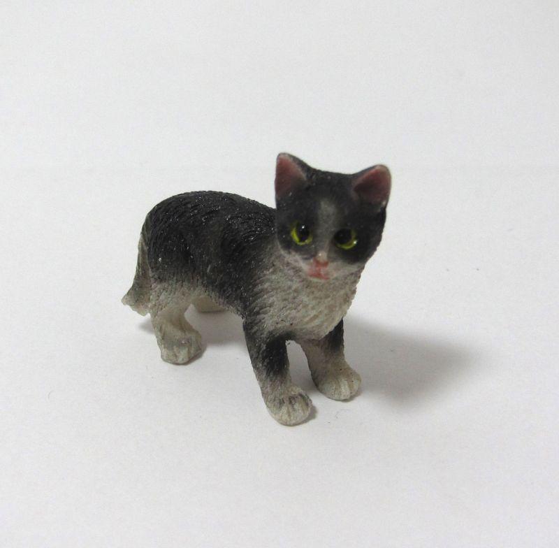画像1: 白黒猫