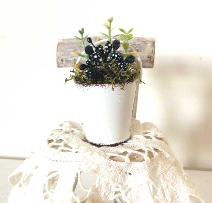 画像3: 白ブリキバケツ寄せ植え