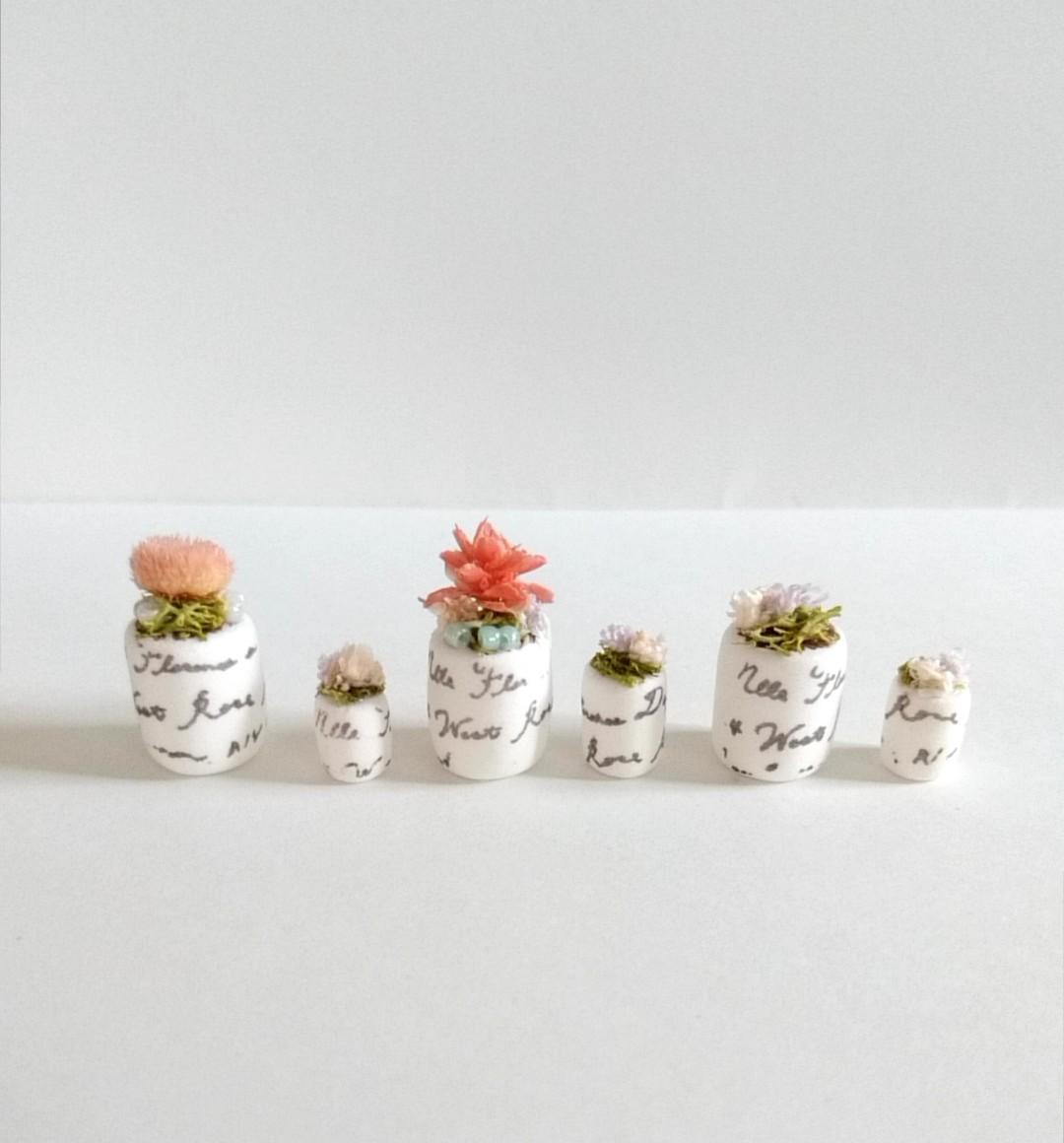 画像1: ミニチュア植物、6点セット