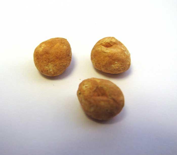 画像1: ジャガイモ1個