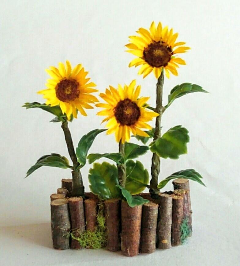 画像1: ひまわりの花壇