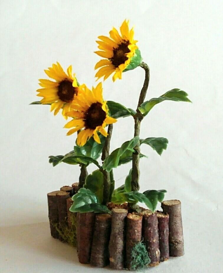 画像2: ひまわりの花壇