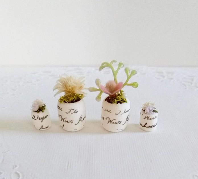 画像1: ミニチュア植物、4点セット
