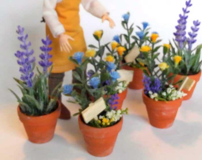 画像3: 青いお花の鉢植え