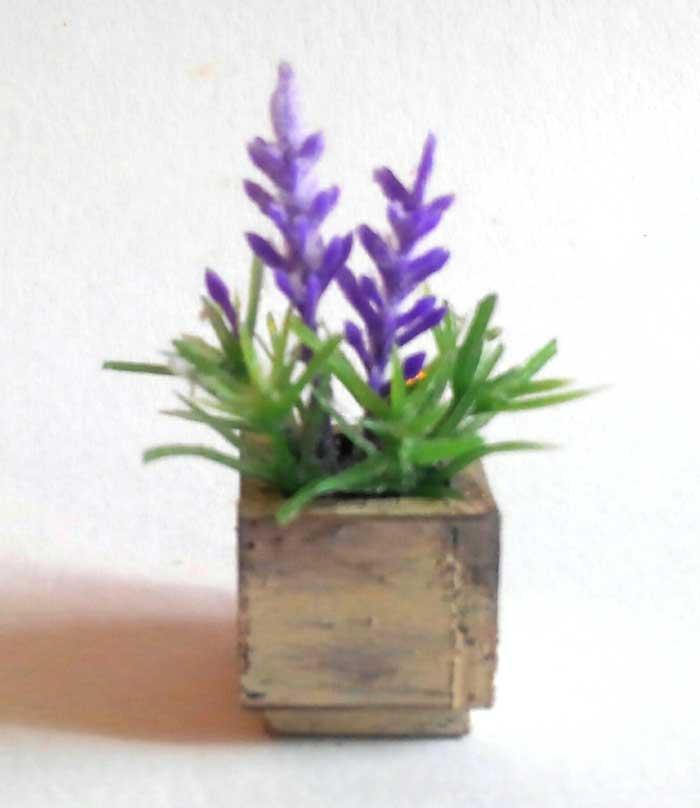 画像2: ラベンダーの小さな鉢植え(ウッドボックス)
