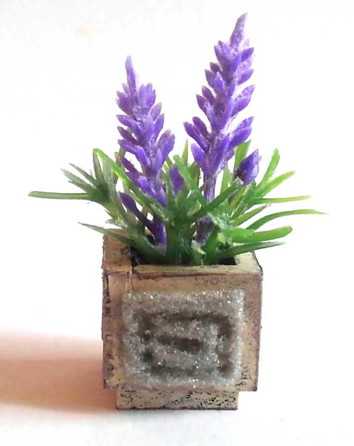 画像1: ラベンダーの小さな鉢植え(ウッドボックス)