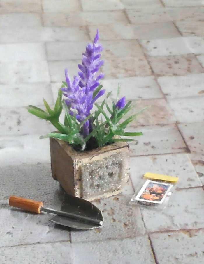 画像4: ラベンダーの小さな鉢植え(ウッドボックス)