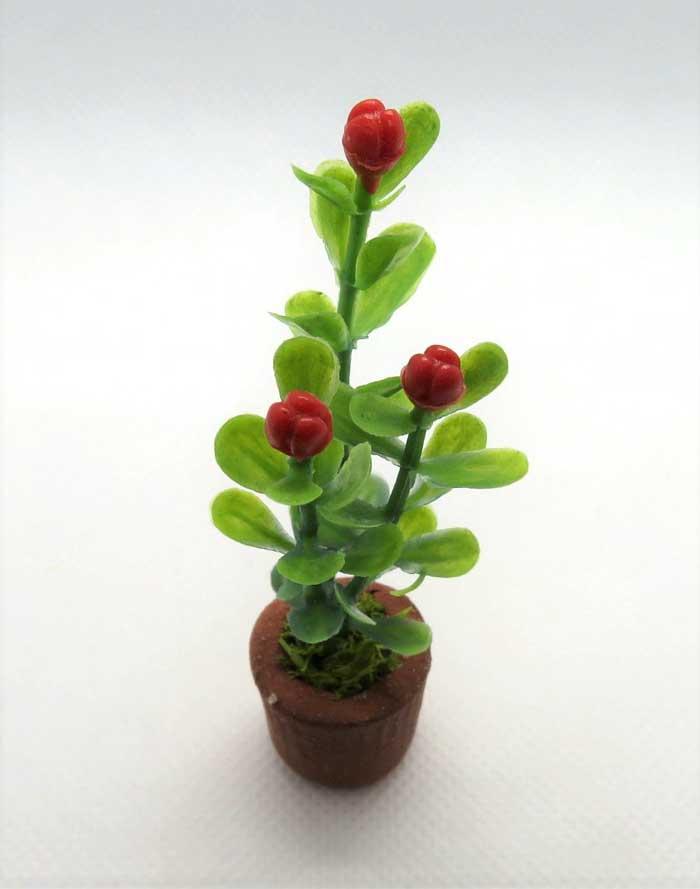 画像1: 赤い花鉢