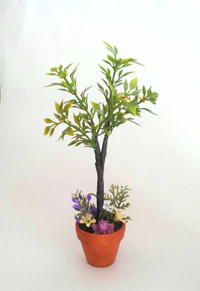 画像1: 花いっぱいの寄せ植えの鉢