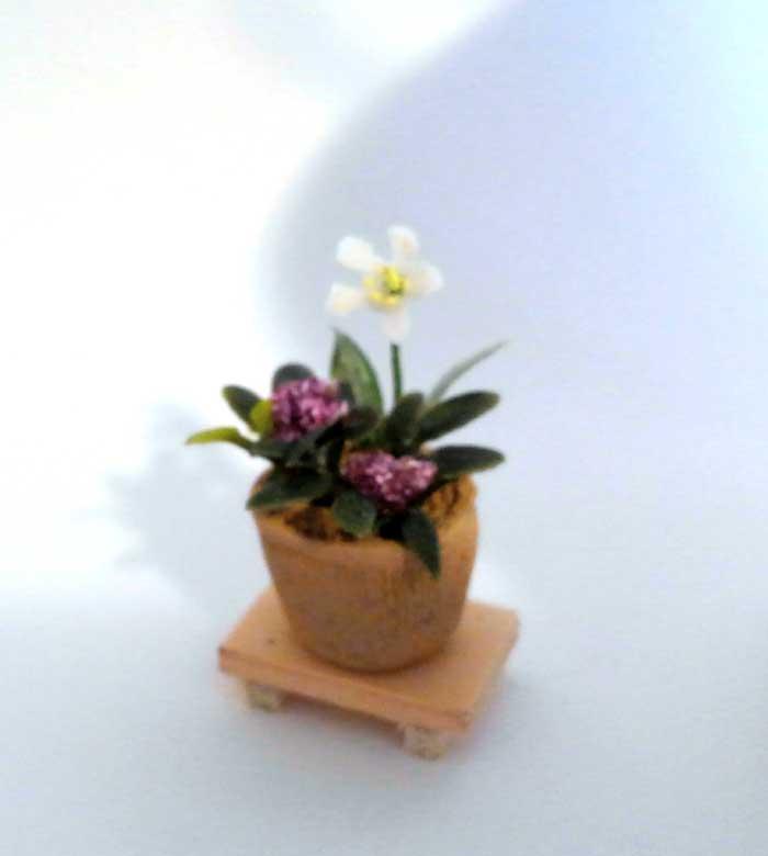 画像1: 和の寄せ植え鉢