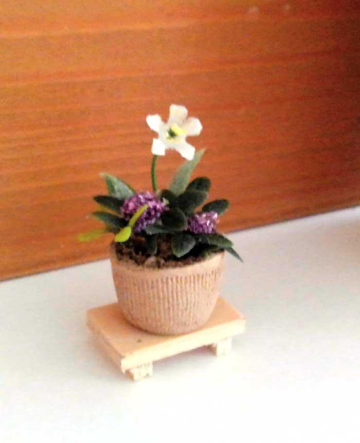 画像3: 和の寄せ植え鉢