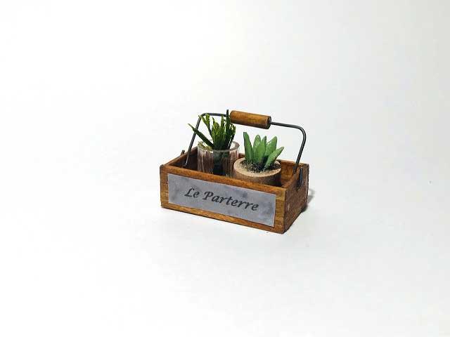 画像1: ハンドルボックス・植物