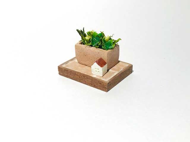 画像1: 長方形テラコッタ寄せ植え
