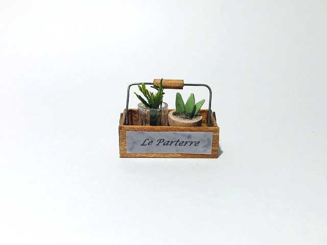画像2: ハンドルボックス・植物