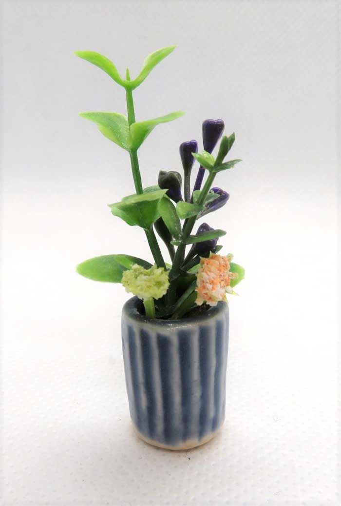 画像1: 寄せ植え・青鉢