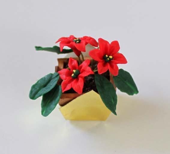 画像1: ポインセチア・金色鉢